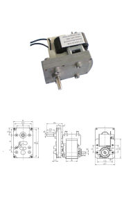 Factory 6W~400W 60mm~104mm AC Induction Gear Motor pictures & photos