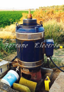 IEC NEMA 60HP Vertical Hollow Shaft 3 Phase Water Motor pictures & photos