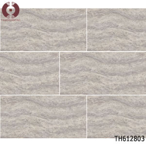 1200X600 Building Material Porcelain Tile Flooring Tile (P12F25) pictures & photos