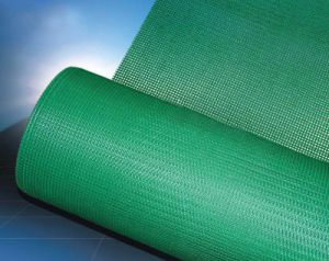 Alkali-Resistant Fiberglass Net for Eifs 10X10mm, 125G/M2 pictures & photos
