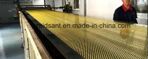 Good Quality Sulphur Bentonite Pastillator pictures & photos
