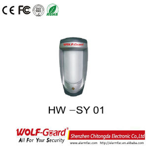 Hw-Sy01 Intelligent Dual Infrared Intrusion Detector pictures & photos