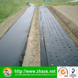 LDPE Agricultural Black Plastic Film in Rolls pictures & photos