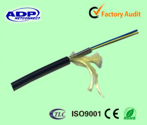 ADP LSZH/PVC Jacket Simplex G652D Armored Fiber Optic Cable pictures & photos