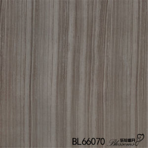 Inkjet Printing Interior Flooring Rustic Stone Ceramic Floor Tile (600X600mm) pictures & photos