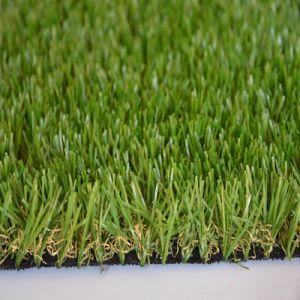 Natural Green Artificial Grass, Artificial Turf in Garden pictures & photos