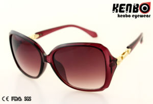 New Design Fashion Plastic Sunglasses with Nice Temple CE FDA Kp50852 pictures & photos