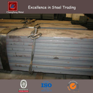 Low Alloy Flat Steel Bar (CZ-F10) pictures & photos
