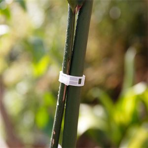 Fastener Plastic Clip Vegetable Clip for Greenhouse pictures & photos