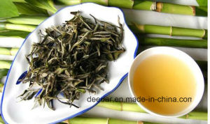 White Tea Made of Leaves Near Bamboo pictures & photos
