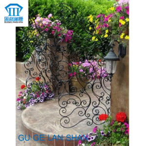 High Quality Crafted Wrought Iron Gate 021 pictures & photos