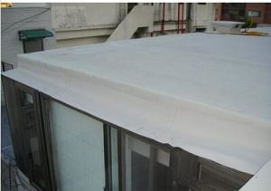 PVC Roofing Waterproof Membrane/Professional Waterproof Membrane pictures & photos