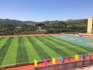 UV Resistance Outdoor Use Rubber Running Track (400m 8 lanes) pictures & photos