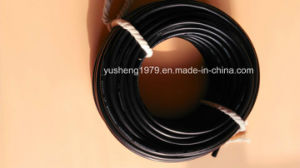 Cable for European Market pictures & photos