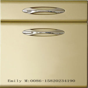 Factory Hot Sale Lacquer Cabinet Door (ZH-K032) pictures & photos