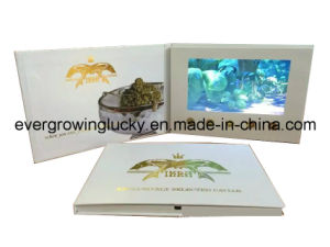 Media Kits LCD Screen Video Brochure pictures & photos