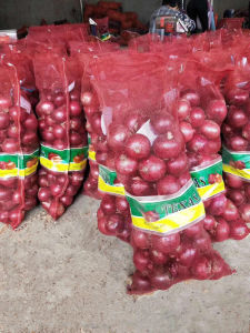 2017 New Crop Fresh Red Onions pictures & photos
