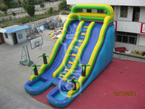 Jungle Double Lane Inflatable Water Slide with Climbing Chsl236 pictures & photos