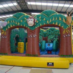 Reasure Hunt Combo Inflatable Funcity (AQ0197) pictures & photos