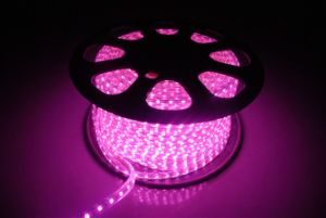 SMD5050 DC220V LED Strip Light with Pink Lighting pictures & photos