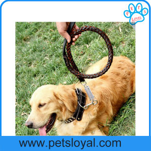 Factory Best Leather Pet Collar for Dogs (HP-106) pictures & photos