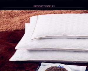 Nature Buckwheat Health Care Pillow with White&Coffee Color pictures & photos