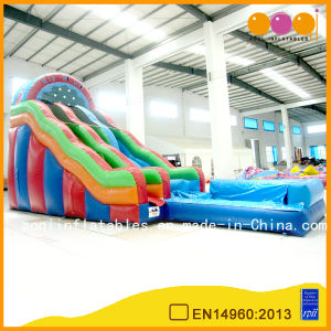 Inflatable Colorful Water Slide with Two-Path and Pool (AQ1089) pictures & photos