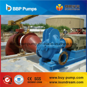 Double Suction Pump ISO9001 Certified pictures & photos