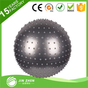 Soft PVC Anti Burst Massage Ball for Exercise pictures & photos