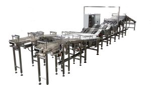 Automatic Online Feeding System for Biscuit Sandwcihing Machine pictures & photos