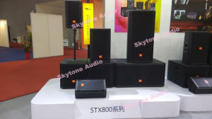 Skytone Stx828s Dual 18inch Speaker Box Design Subwoofer pictures & photos