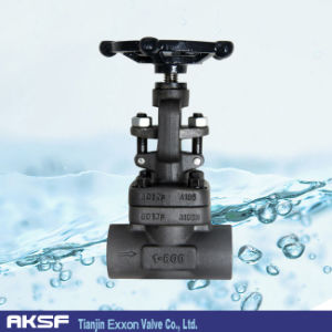 A105 Forged Steel Gate Valve