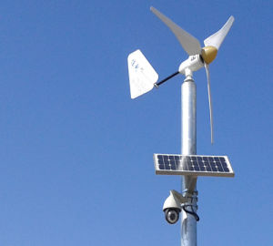 Professional Factory Wind Power Generator/100W 200W 300W Wind Generator Plant pictures & photos