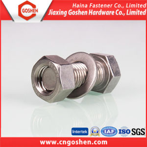 Chinese Manufacture Stainelss Steel Hexagon Head Bolt with Nut pictures & photos