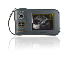 Farmscan L60 Veterinary Ultrasound Scanner pictures & photos