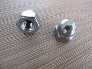 Stainless Steel Hex Cap Nut DIN 1587 for Fasteners pictures & photos