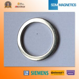 Ts 16949 Big Size Permanent Neodymium Ring Magnet pictures & photos