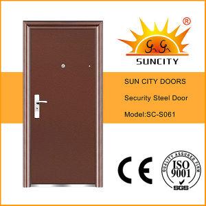 Low Price Flush Powder Coating Steel Iron Doors (SC-S061) pictures & photos