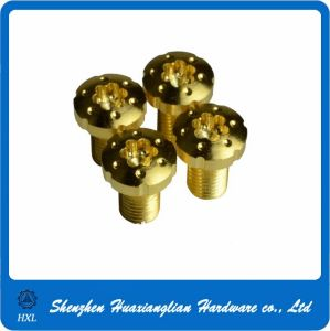 China Standard Tox Gold Screw with Bottom Price pictures & photos