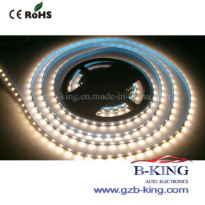 SMD5050 Flexible LED Strip Lights pictures & photos