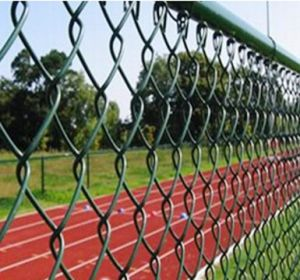 Sports Venues Fence/Chain Link Fence for Sports Field/Sport Ground Fence (HPZS3005) pictures & photos