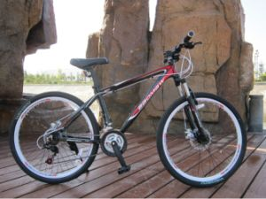 China Manufacturer MTB Mountain Bicycle pictures & photos