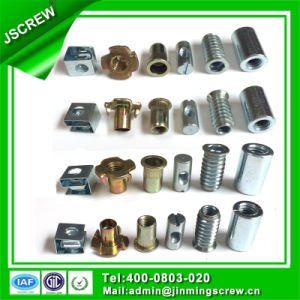 Factory Directly Cutomerized Special Insert Nut for Furniture pictures & photos