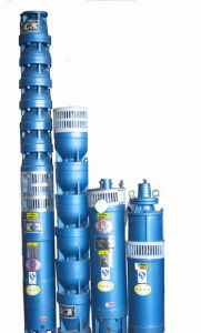 Qj Irrigation Stainless Steel Cylinder Submersible Deep Well Pump pictures & photos