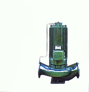Hot Sale Vertical Canned Pump, Slurry Pump pictures & photos