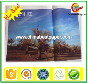 Glossy 71 % Roll Art Paper for Ghana pictures & photos