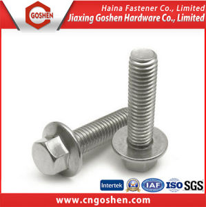 Stainless Steel 304 316 Hex Head Bolt with Nut and Washer pictures & photos