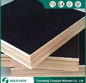 Hot Price Gteat Quality Poplar Melamine Shuttering Plywood 1220X2440mm pictures & photos