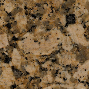 Giallo Fiorito Granite Countertops for Kitchen pictures & photos