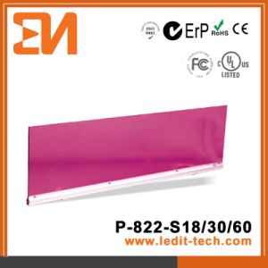 CE/EMC/RoHS Panel Light/ Wall Washer (P-822) pictures & photos